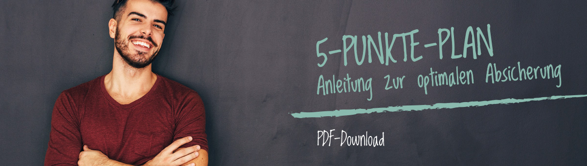 5 punkte plan als pdf download